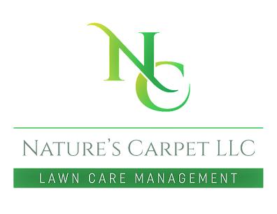 San Antonio Tx Lawn Care Service
